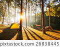 Sun rise at Pang-ung, Pine forest in Thailand 26838445