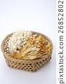 버섯 버섯 많음 26852802