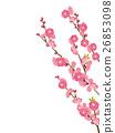 복숭아 꽃 26853098