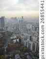 東京 風景 花莖 26855441