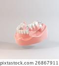 牙齒 齒輪 門牙 26867911