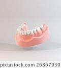 牙齒 齒輪 門牙 26867930
