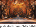 Fairy tale road in Autumn 26872468