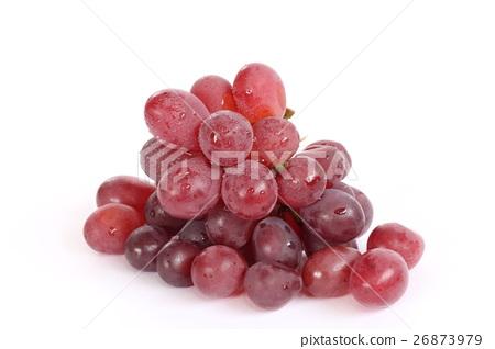 Grape 26873979