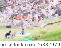ฤดูของดอกซากุระดอกซากุระชมดอกซากุระที่สวนชิเมอีโยซิโน 26882979