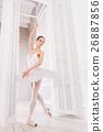 Elegant ballerina standing in the doorway 26887856