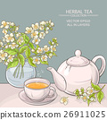 jasmine tea vector illustration 26911025