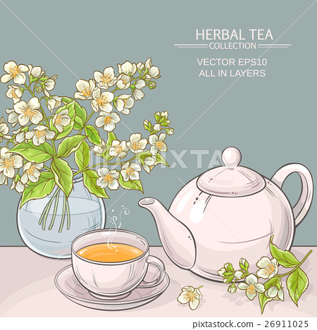 jasmine tea vector illustration 26911025