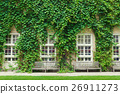 Wall house covered with green ivy leaves. 26911273