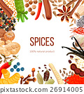 Ornament made of Spices with text 100 natural 26914005