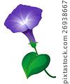 植物 花朵 花 26938667