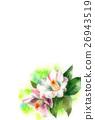花朵 花 花卉 26943519