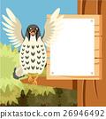 Falcon, bird, vector 26946492