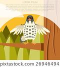 Falcon, bird, vector 26946494