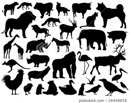 animal, animals, vector 26948858