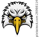 eagle, vector, bird 26966114