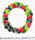 圓的 藍莓 樹莓 26967217