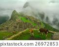Llamas and Machu Picchu 26972853