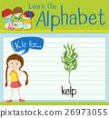 Flashcard letter K is for kelp 26973055