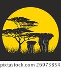 SUN AFRICA 26973854