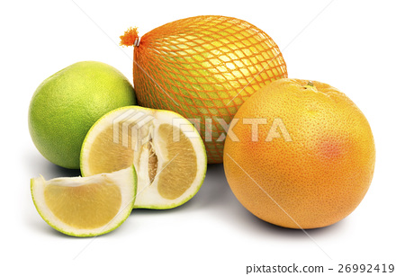 Set of citrus fruits 26992419