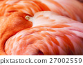 Flamingo Feathers - Pink Bird Background with Head 27002559