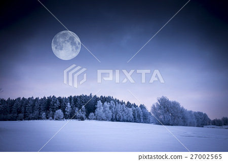 Winter Landscape. Field Covered with Snow.  27002565