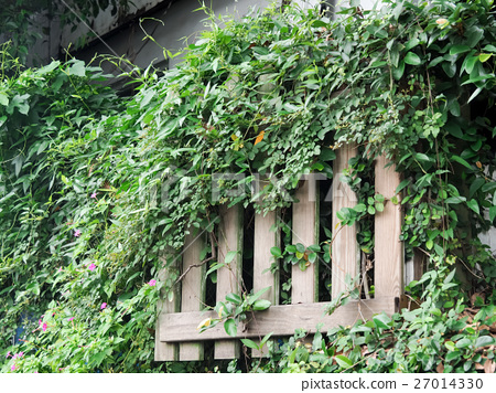 荒廢的柵欄 27014330