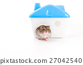 Hamster and his home 27042540