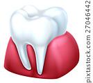 tooth, gum, dental 27046442