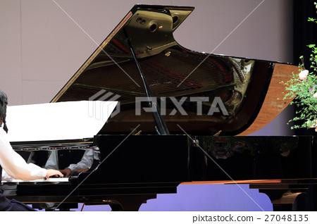 Grand piano 27048135