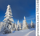 Winter in the Carpathian mountains 27053288