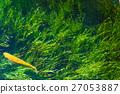 pond, lagoon, Wakuike 27053887