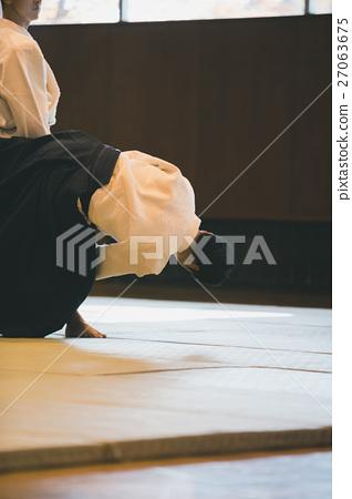 martial artist 27063675