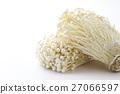 팽이 버섯 2 27066597