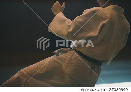 martial artist 27086990