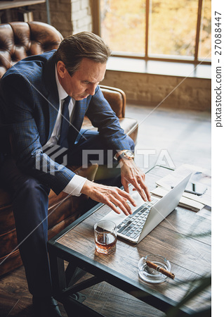 Senior male businessperson absorbedly working 27088447