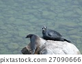 The Baikal seal nerpa 27090666
