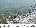 The Baikal seal nerpa 27090692