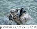 The Baikal seal nerpa 27091736