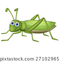 Cute grasshopper cartoon 27102965
