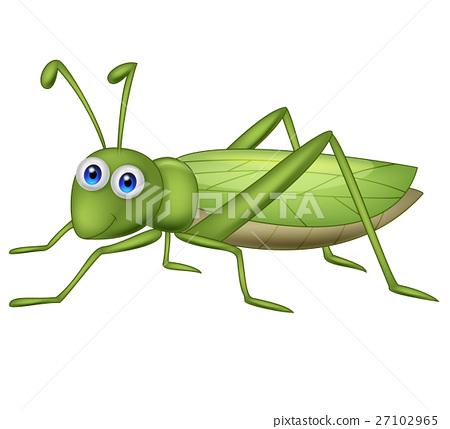 Cute grasshopper cartoon 27102965