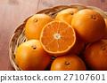橘子 蜜柑 桔子 27107601