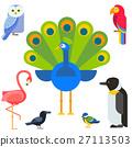 벡터, 새, 조류 27113503