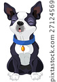 Howling Boston Terrier 27124569