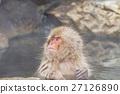 나가노 _ 온천에 들어가는 원숭이 27126890