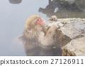 나가노 _ 온천에 들어가는 원숭이 27126911
