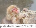 나가노 _ 온천에 들어가는 원숭이 27126913