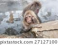 나가노 _ 온천에 들어가는 아이 원숭이 27127100