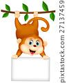 animal, monkey, hanging 27137459